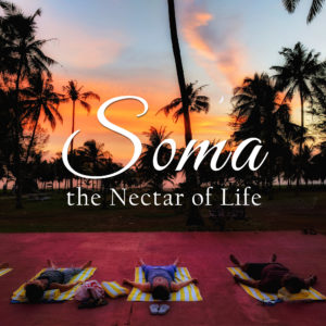 Soma :: The Nectar of Life